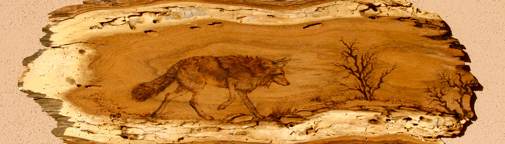 Coyote on the prowl - woodburning