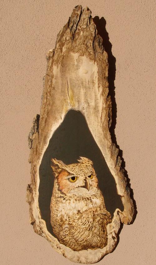 Owl by Orchid W. Davis